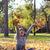çok · güzel · küçük · kız · sonbahar · yaprakları · güzellik · park · elma - stok fotoğraf © goce