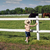 child watching the horses on the farm stock photo © goce