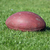 old american football ball on green grass stock photo © goce