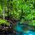 emerald pool stock photo © goinyk