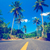 nice asfalt road with palm trees stock photo © goinyk