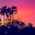 gün · batımı · ada · güzel · doğal · manzara · hindistan · cevizi - stok fotoğraf © goinyk