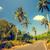 asfalt road with palm trees stock photo © goinyk