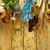 植物 · 園芸用具 · 木材 · コピースペース · 花 - ストックフォト © goir