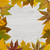 cadre · automne · frontière · coloré · bouleau - photo stock © goir