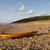 blue · sky · dourado · verão · praia · madeira - foto stock © gordo25