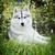 aandachtig · hond · buitenshuis · jachthond · sneeuw · kleur - stockfoto © goroshnikova