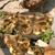 黄色 · 小 · カモ · 卵 · 孤立した · 白 - ストックフォト © goruppa