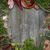 Kräuter · Rahmen · frisch · Jahrgang · Holz · Holz - stock foto © grafvision