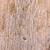 ağaç · havlama · doku · ahşap · orman - stok fotoğraf © grafvision