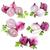 collectie · uien · geïsoleerd · witte · blad · plantaardige - stockfoto © grafvision