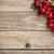 hawthorn berries stock photo © grafvision