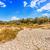 seca · terra · rachado · lago · textura · abstrato - foto stock © grafvision