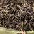egész · levél · zöld · tea · pult · tea · táska - stock fotó © grafvision