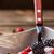 gezonde · ontbijt · yoghurt · müsli · vruchten · gezondheid - stockfoto © grafvision