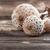 güneş · şemsiyesi · mantar · 14 · gıda · ahşap · orman - stok fotoğraf © grafvision