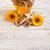 miele · jar · ape · polline · propoli · legno - foto d'archivio © grafvision
