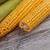 corn cob stock photo © grafvision