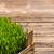 зеленый · пшеницы · трава · пространстве · текста · фон - Сток-фото © grafvision