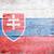 vlag · Slowakije · geschilderd · hout · plank - stockfoto © grafvision