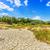 secas · rachado · solo · terra · fundo · deserto - foto stock © grafvision