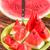 melancia · branco · sobremesa · fresco · semente - foto stock © grafvision