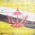 bandeira · Brunei · pintado · sujo · madeira - foto stock © grafvision