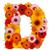 花 · 手紙 · アルファベット · 孤立した · 白 · 文字d - ストックフォト © grafvision