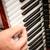 muzikant · hand · spelen · accordeon · lichaam · piano - stockfoto © grafvision