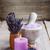 dried lavender stock photo © grafvision
