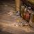 ювелирные · изолированный · белый · древесины - Сток-фото © grafvision