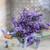 lavanda · flores · tarjeta · edad · papel - foto stock © grafvision
