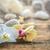orchideeën · bloeien · vintage · houten · bloem · achtergrond - stockfoto © grafvision