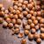 hazelnoten · jute · voedsel · groep · energie - stockfoto © grafvision