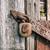 öreg · rozsdás · lakat · fából · készült · ajtó · épület - stock fotó © grafvision
