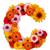 花 · 手紙 · アルファベット · 孤立した · 白 · 手紙c - ストックフォト © grafvision