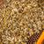 makro · atış · arılar · petek · bahçe · çerçeve - stok fotoğraf © grafvision