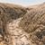 suelo · erosión · imagen · suelo · desierto · muchos - foto stock © grafvision