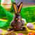 шоколадом · Пасхальный · заяц · яйца · сезонный · Пасху - Сток-фото © grafvision