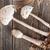 guarda-sol · cogumelo · belo · crescente · grama · verde · comida - foto stock © grafvision