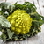 <b>romanesco broccoli</b> stock photo