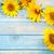 ヒマワリ · フレーム · 美しい · 国境 · コピースペース · 文字 - ストックフォト © grafvision