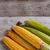 sweet corn stock photo © grafvision
