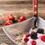 kom · müsli · yoghurt · vers · bessen · Rood - stockfoto © grafvision