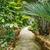 serra · alimentare · natura · giardino · farm - foto d'archivio © grafvision