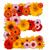 花 · 手紙 · アルファベット · 孤立した · 白 - ストックフォト © grafvision