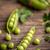 kinyitott · zöld · zöldborsó · öreg · fa · asztal · étel - stock fotó © grafvision