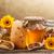 miele · ancora · vita · a · nido · d'ape · polline · propoli · fiore - foto d'archivio © grafvision