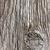 texture of wood stock photo © grazvydas