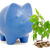 fa · növekvő · pénzfa · köteg · érmék · üzlet - stock fotó © grazvydas